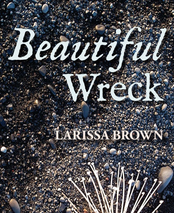 BeautifulWreck_frontcover_NEW_sm